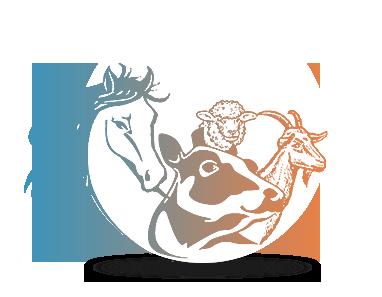 horse-cows-vector2