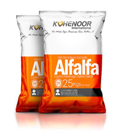 Alfalfa-Seed-Bag